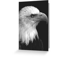 Patriot I Greeting Card