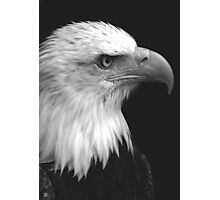 Patriot I Photographic Print