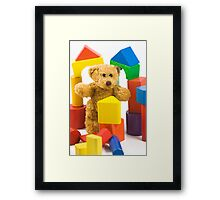 Ted's castle Framed Print