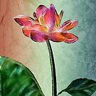 Lone Flower by arline wagner