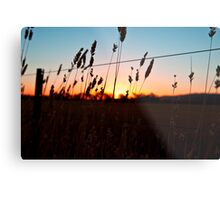 Shadow Plains Metal Print