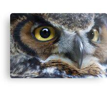 Great Gray Owl Eyes Metal Print