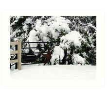 Rustic Snow Scene Art Print