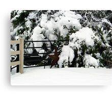 Rustic Snow Scene Canvas Print