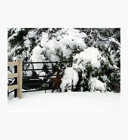Rustic Snow Scene Photographic Print