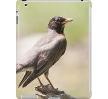 That's A Fine Looking High Horse iPad Case/Skin