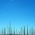 Pick up Sticks. by LeedenMoon