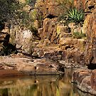 Reflections of Devil's Canyon by Vicki Pelham
