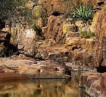 Reflections of Devil's Canyon by Vicki Pelham
