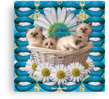 KITTEN BASKET Canvas Print