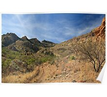 Dirt Road into the Tumacacori Mountains Poster
