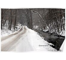 gravel road in winter of 2010. Poster