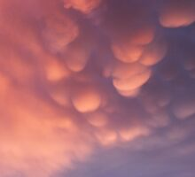 Sky Show by Pam McLure