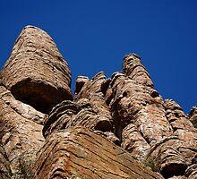 Devil's Canyon #2 - Arizona by Vicki Pelham