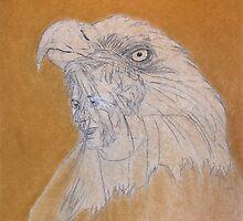 Spirit in Feathers by David M Scott