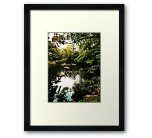 Scenic Serenity   Framed Print