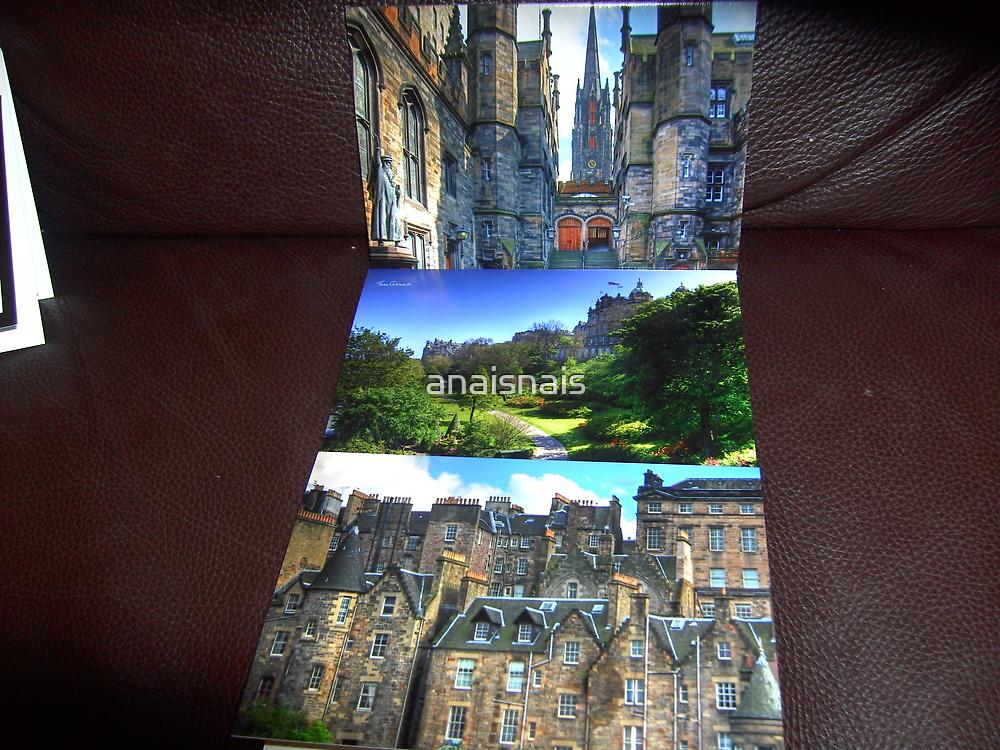 Tomg's Edinburgh Alternative Views make stunning purchases! by anaisnais