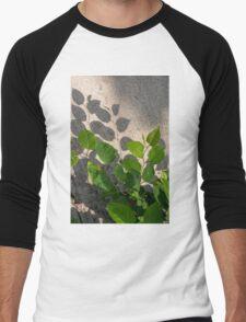 Leaves Shadows Men's Baseball ¾ T-Shirt