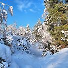 Snowbound by relayer51