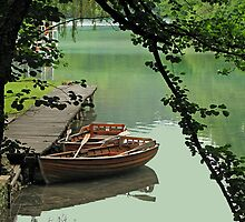 Rowing Boats by Jenny Brice