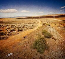 Washington State desert lands by MivillePhoto