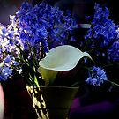 Bluebells With Whatchama Calla-It by Michael May