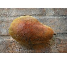 Rustic Pear Photographic Print