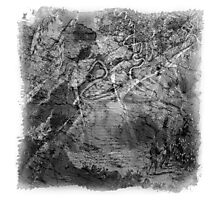 The Atlas of Dreams - Plate 17 (b&w) Photographic Print