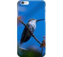 little bird iPhone Case/Skin