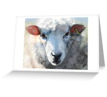 Winter sheep face, Romney Marsh Greeting Card
