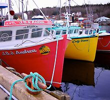 Fishing Harbour ~ Nova Scotia Canada by Roxane Bay