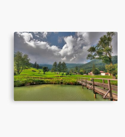 Green hills Canvas Print