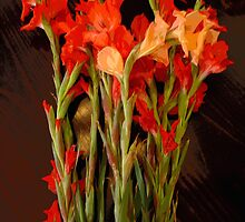 Red Gladiolas on Dark Wood by TheMadame