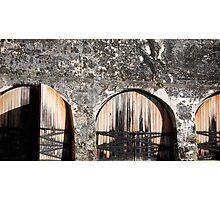 fort.. Photographic Print