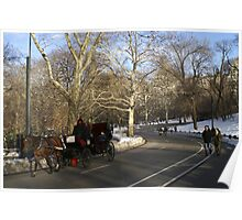 Winter afternoon Central Park NYC Poster