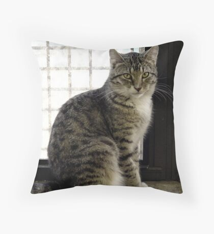 Silent Regard Throw Pillow