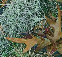Leaves and Tendrils by Lynda Lehmann