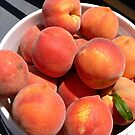 Peach Picking Time in AZ by Lucinda Walter