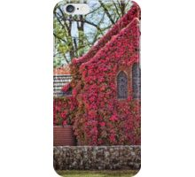Gostwyck Chapel iPhone Case/Skin