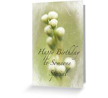 Dedication to Spring Happy Birthday Greeting Card