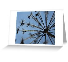 Naked eye crystals Greeting Card