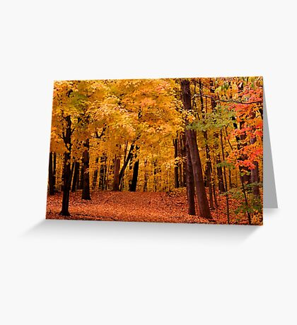 Autumn alley Greeting Card
