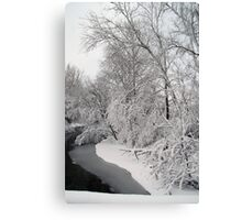 Snow Filled Trees (V) Canvas Print