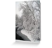 Snow Filled Trees (V) Greeting Card