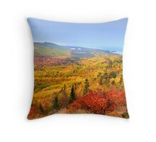 Beautiful autumn landscape Throw Pillow