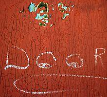 the novice graffiti artist...... by Lynne Prestebak