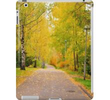 Valley dressed in autumn colors iPad Case/Skin