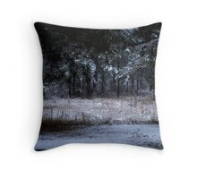 Wintry Evening Throw Pillow