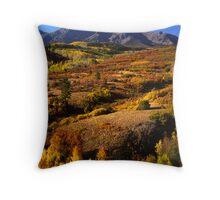 San Juan mountains Throw Pillow
