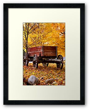 Antique Wagon and autumn colors by snehit